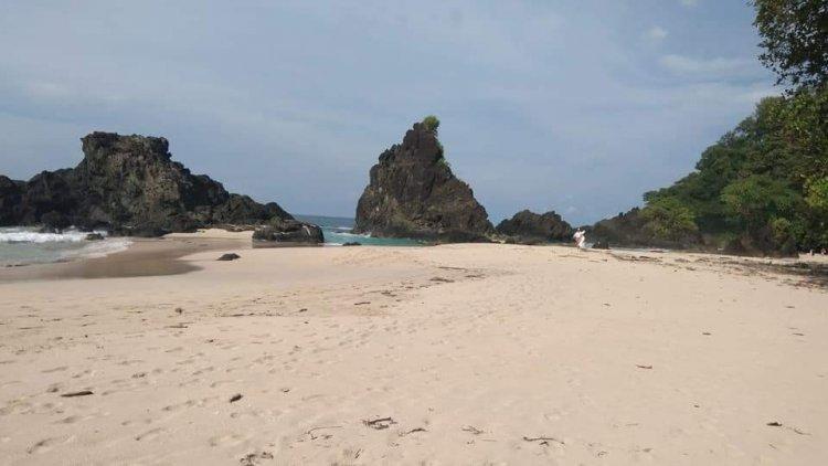 Pulau Bangkaru Yang Dihuni Sejuta Penyu