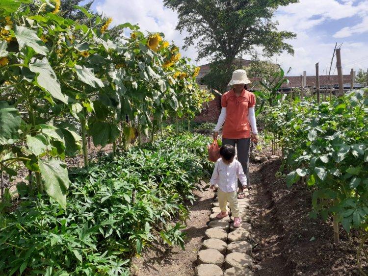Agrowisata di Aceh
