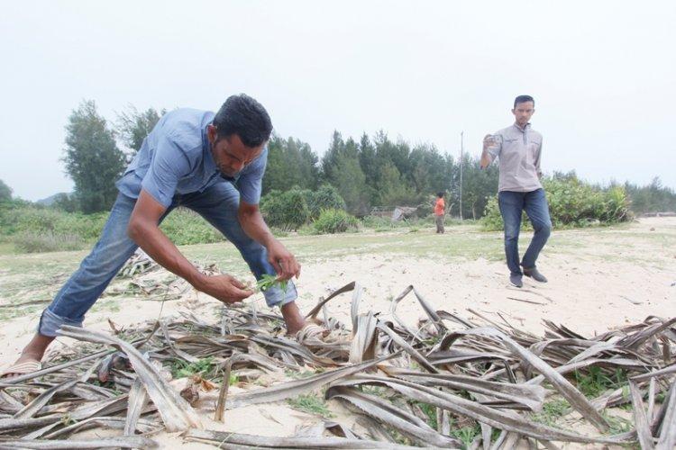 Sambal Sawi Laut Mentah Makanan Khas di pantai lampuuk Banda Aceh