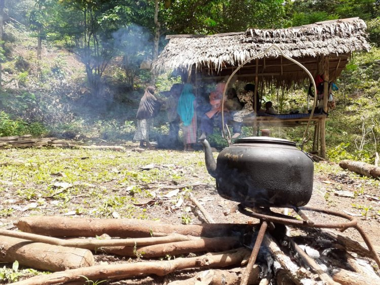 Berburu Durian Lamno Super