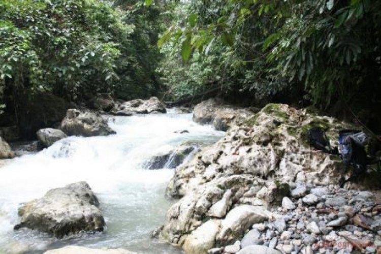Wisata Kedah Gayo Lues